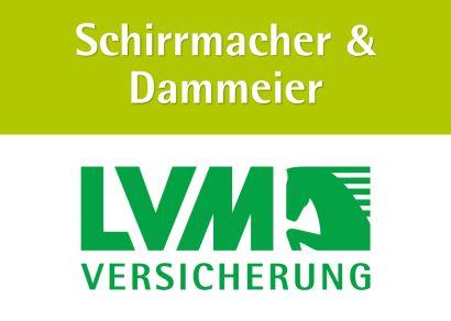 logo_sd-lvm